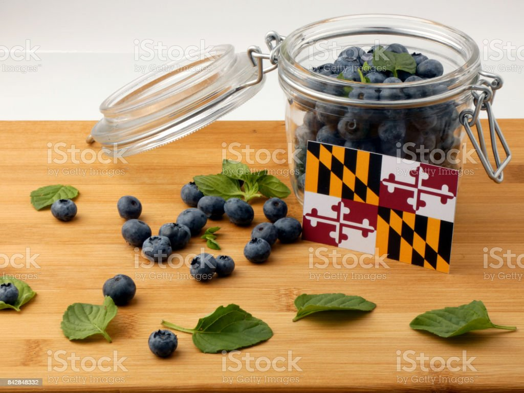 Maryland flag on a wooden plank with blueberries isolated on white stock photo