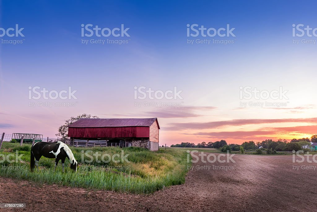 Maryland Magic stock photo