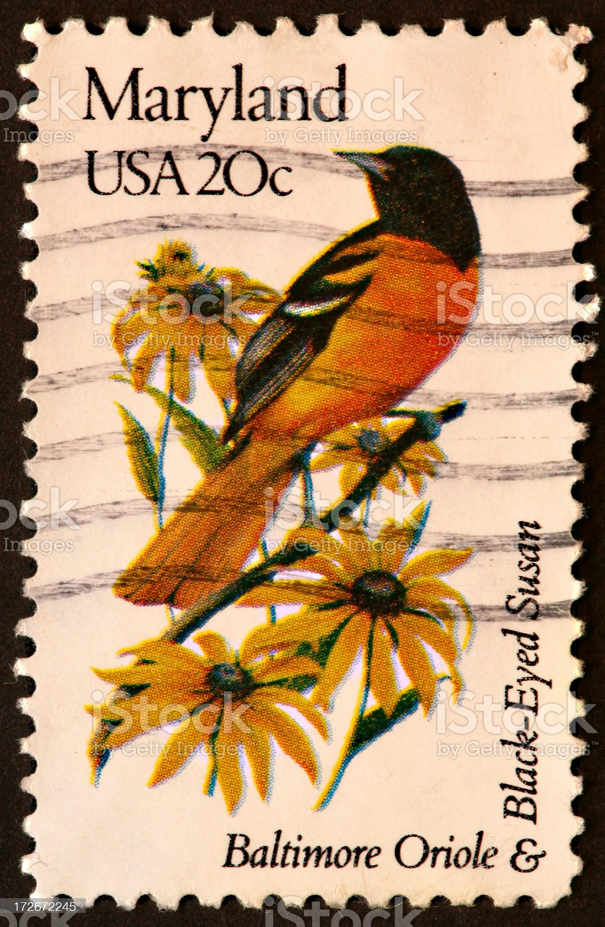 Maryland, Oriole, and Black-eyed Susan stamp royalty-free stock photo