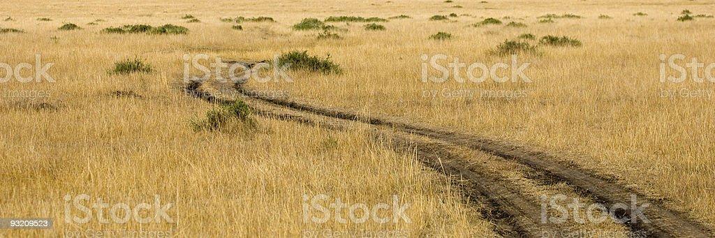 Masai mara royalty-free stock photo