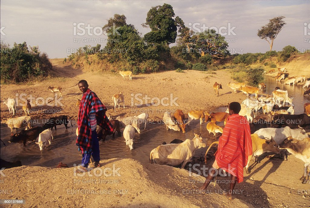 Masai warriors on Talek river, Masai Mara Game Reserve, Kenya stock photo