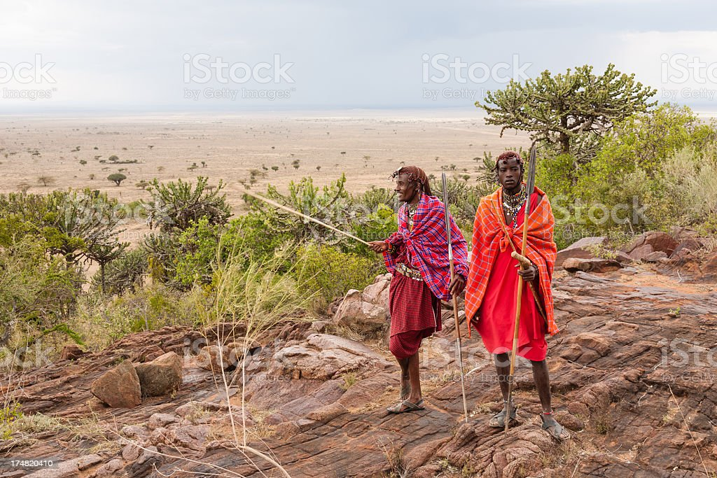 Masai warriors preparing for a hunt stock photo