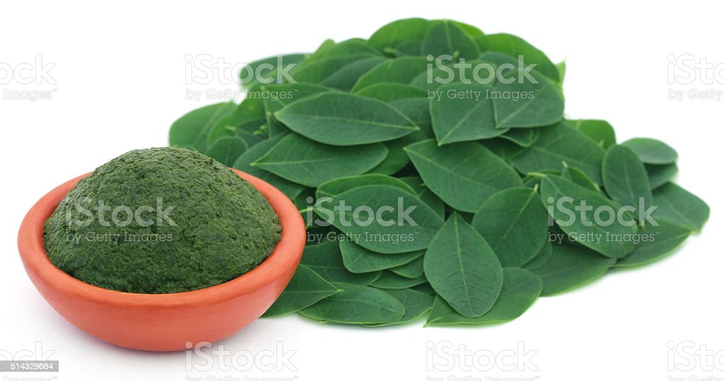 Mashed Moringa leaves in a pottery stock photo