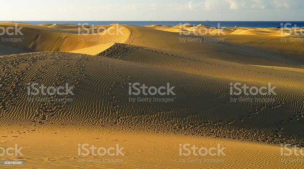 Maspalomas Beach. Gran Canaria. stock photo