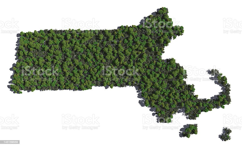 Massachusetts in Trees stock photo