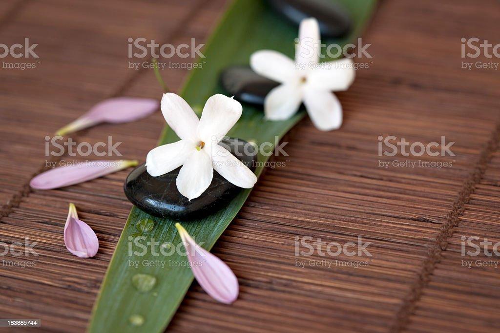 Massage Steine und Blütenblättern – Foto