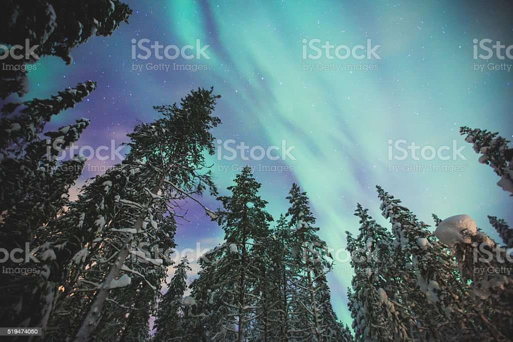 Massive vibrant Aurora Borealis Northern Lights in Lapland, Norway stock photo