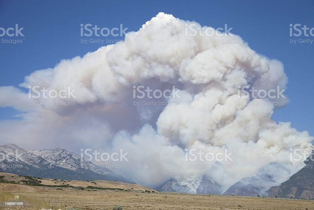 Massive Wild Fire stock photo