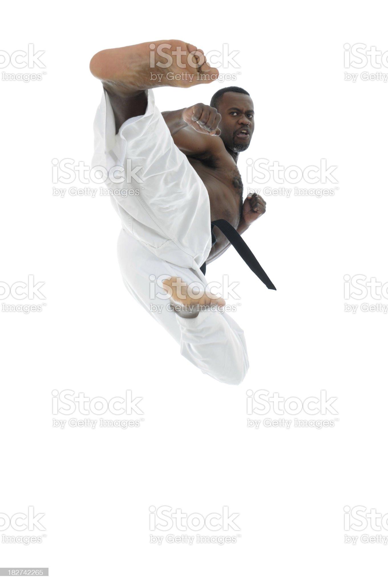 Master in flight royalty-free stock photo