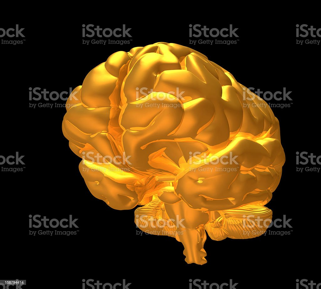 master mind stock photo