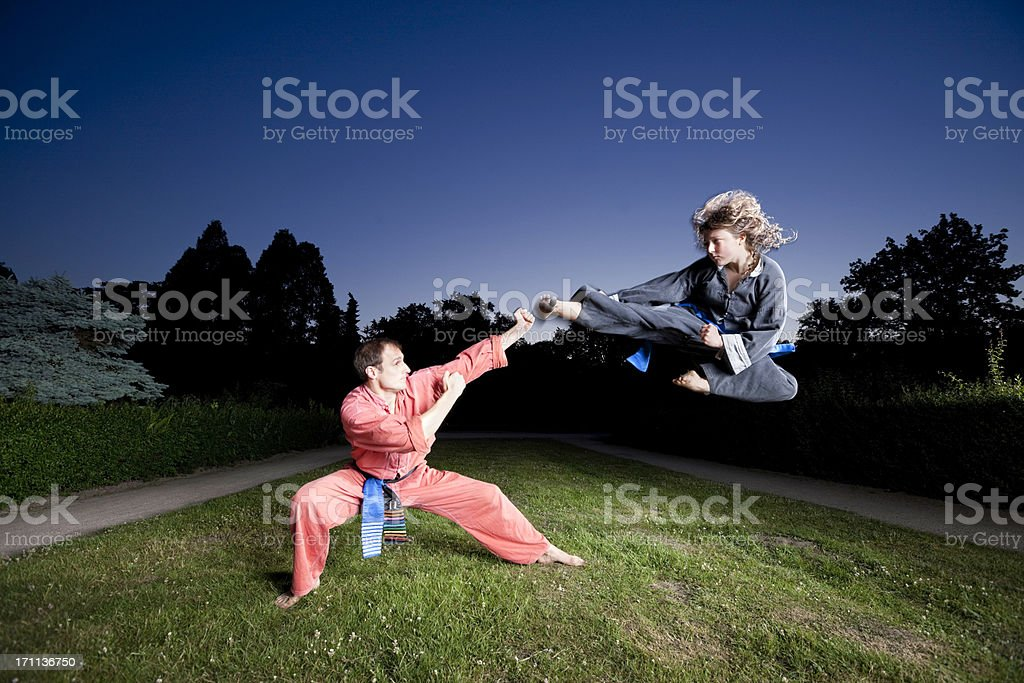 masters of martial arts royalty-free stock photo