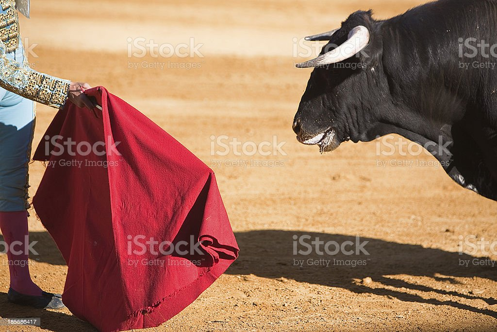 Matador waving a red cape at a bull in a bullfight in Spain stock photo
