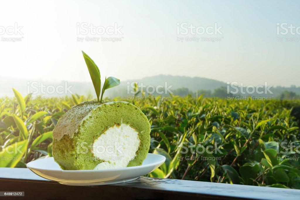 Matcha green tea roll cake in farm stock photo