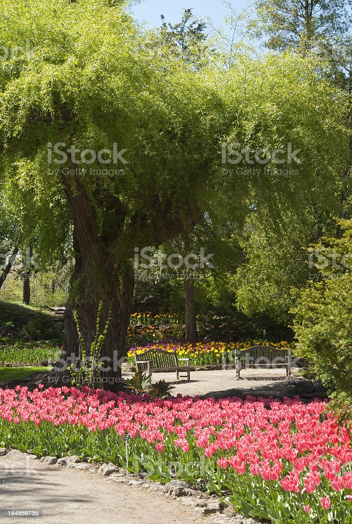 Matching Benches royalty-free stock photo