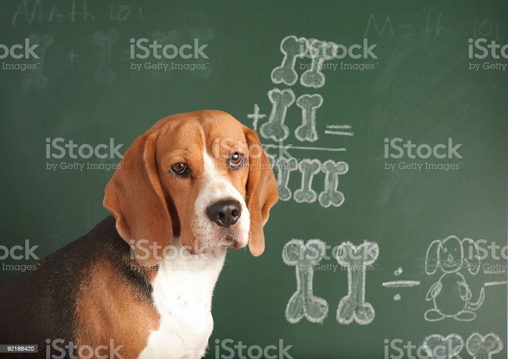 Math 101 stock photo