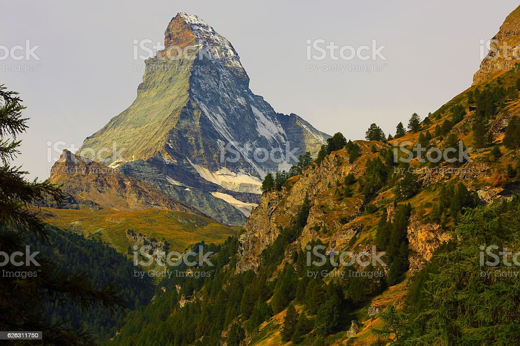 Matterhorn above zermatt pine trees woodland idyllic valley, Swiss Alps stock photo