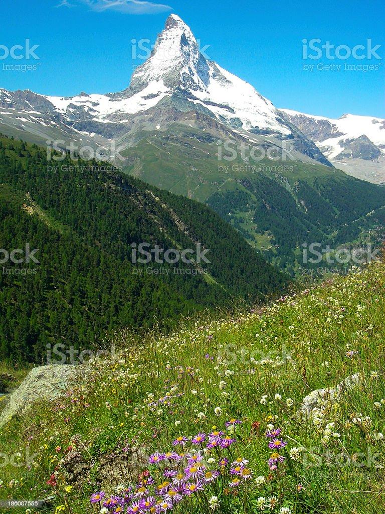 Matterhorn Peak and Alpine Meadows Swiss Alps stock photo