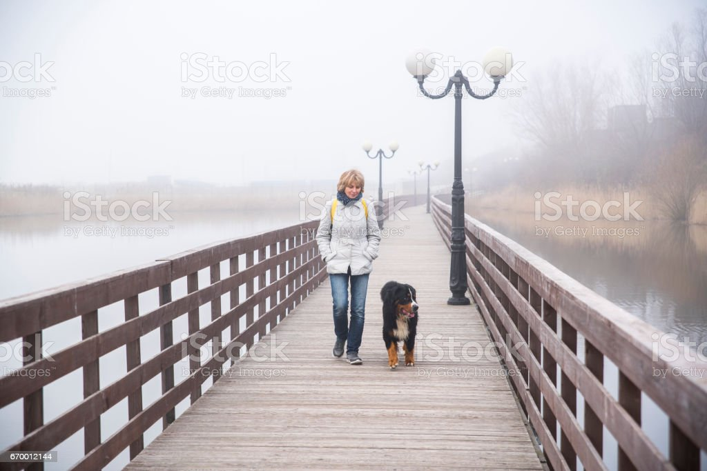 Mature attractive 50-years-old woman walking the dog on the boardwalk stock photo