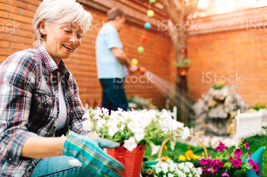 Mature Couple Planting In Their Backyard. stock photo