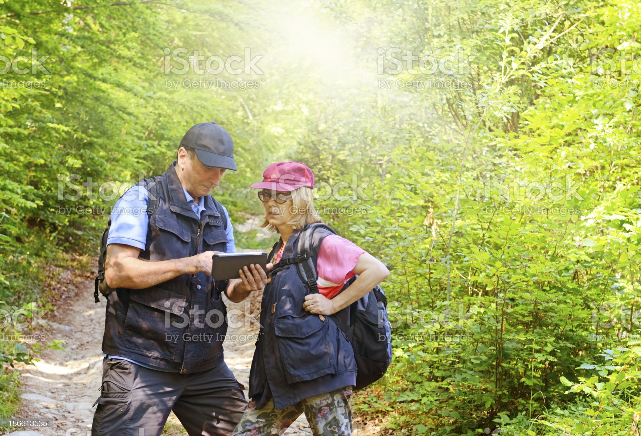 Mature Couple Reading Tablet in a Forest royalty-free stock photo