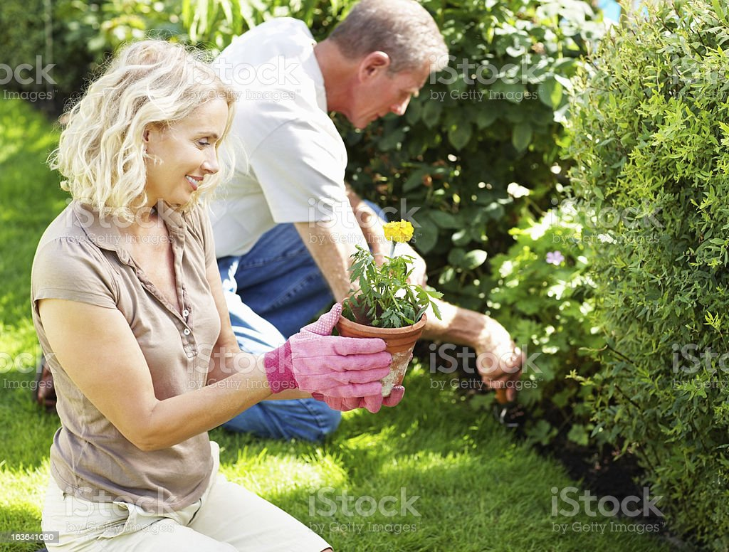 Mature couple working in their garden royalty-free stock photo