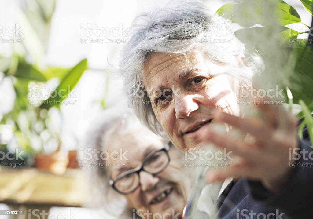 Mature Daughter And Senior Mother at Public Garden royalty-free stock photo