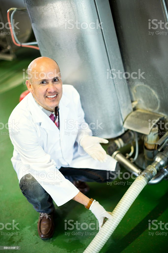 Mature employee working in raw milk sector stock photo