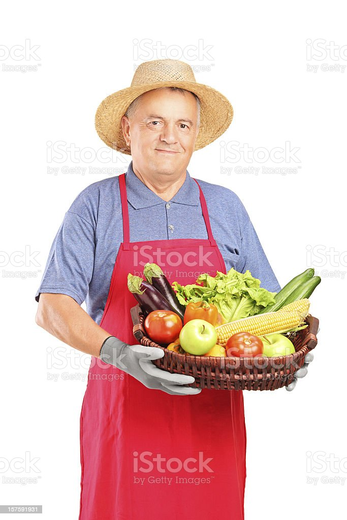 Mature farmer man holding basket with vegetables royalty-free stock photo