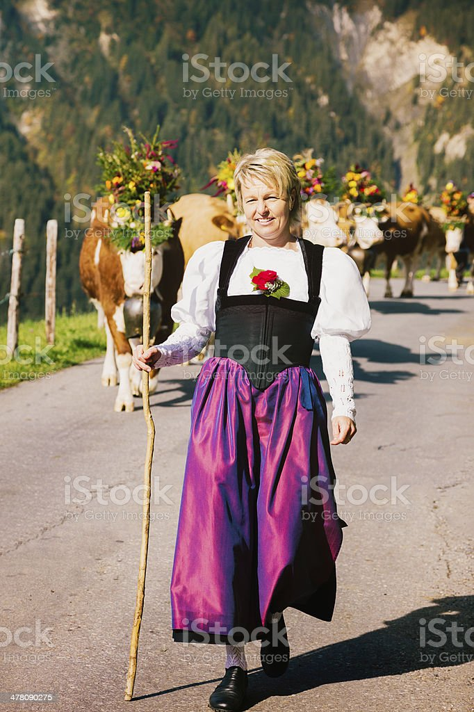 Mature Female Swiss Farmer leading cows to Fair Vertical stock photo