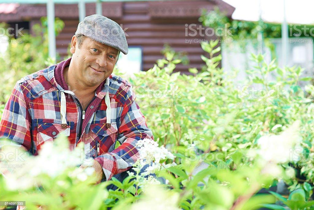 Mature gardener stock photo