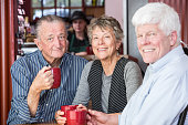 Mature Group of Friends in Coffee House