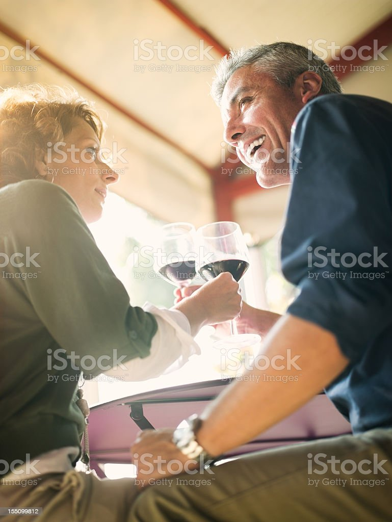 Mature Italian couple toasting in bar royalty-free stock photo