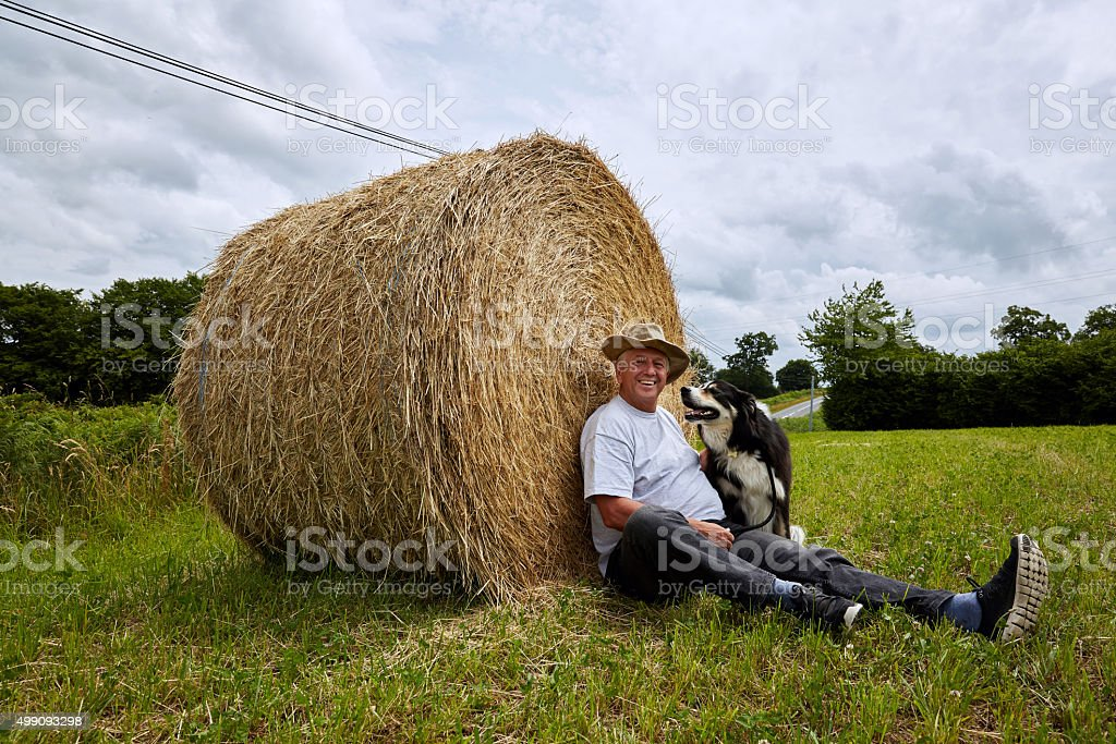 Mature man and dog relaxing on hay bale stock photo