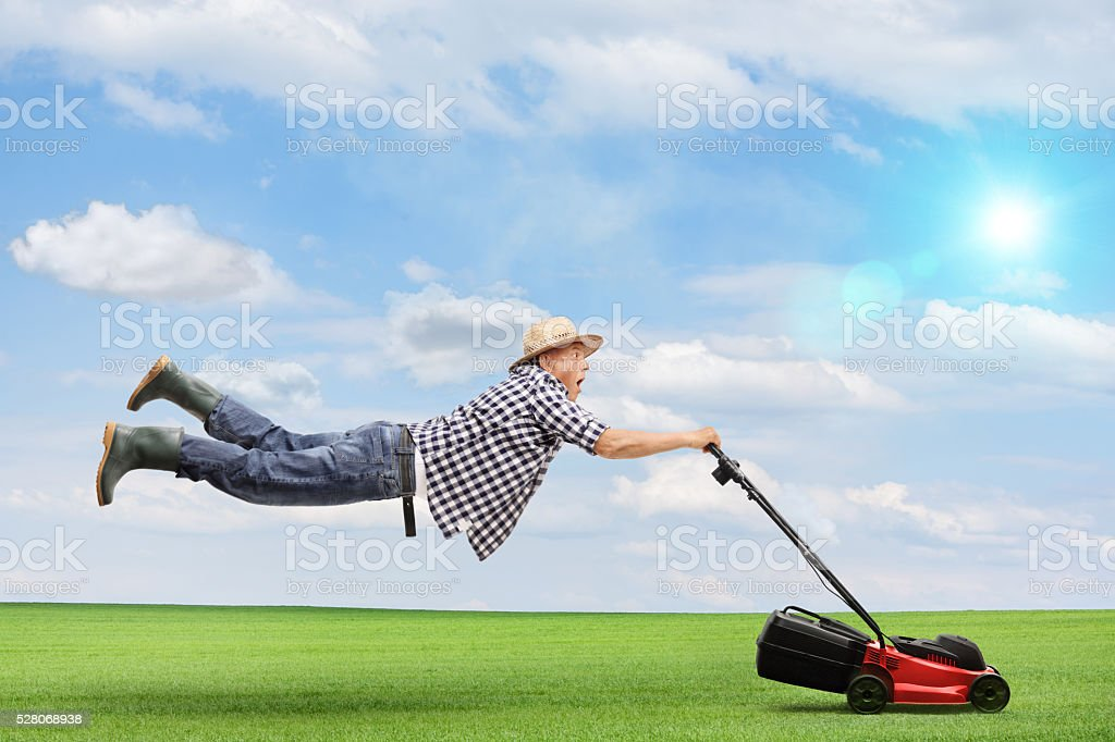 Mature man being pulled by a lawnmower stock photo