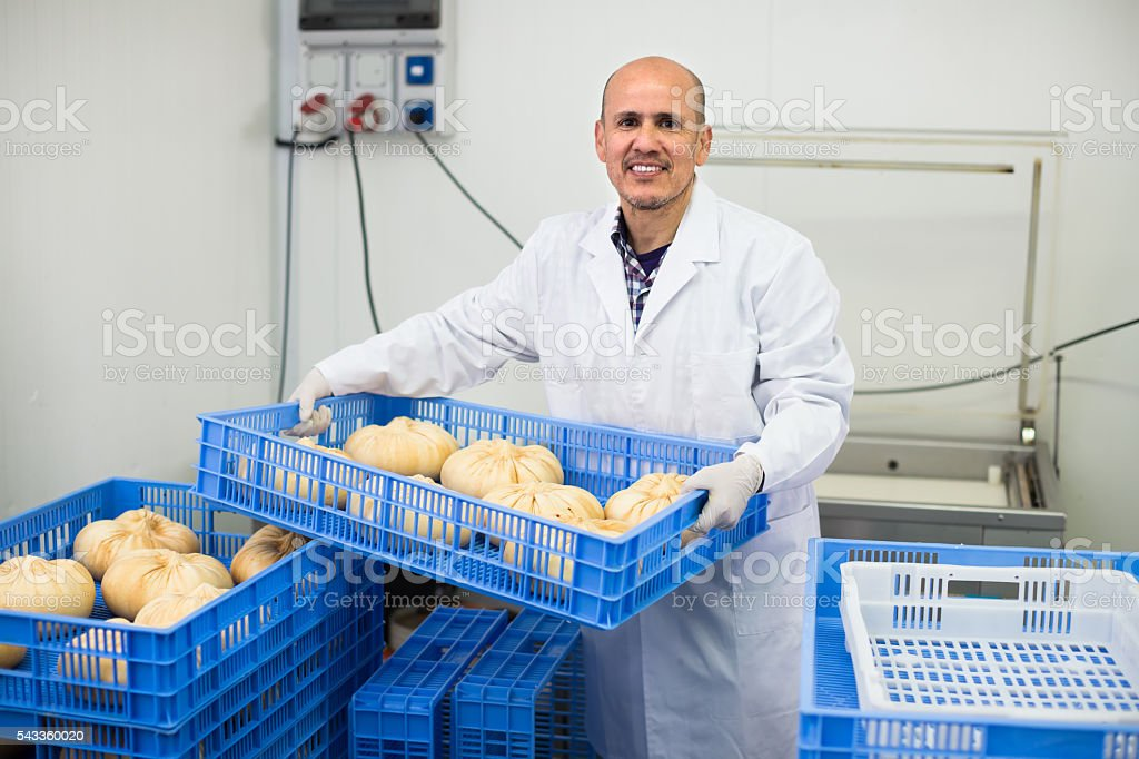 Mature man on cheese production factory stock photo