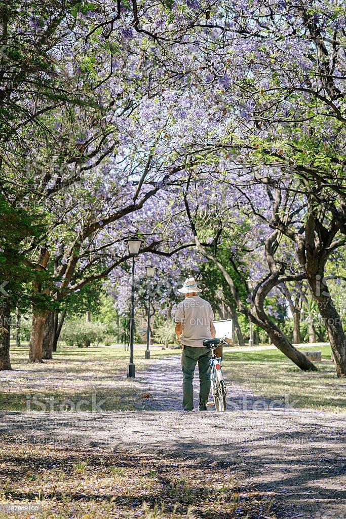 Homem Maduro pintura em lona em um parque. foto royalty-free