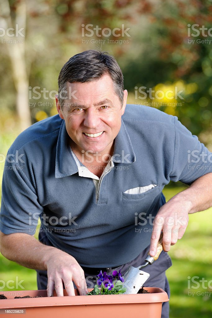 Mature Man Planting Flowers In The Garden royalty-free stock photo