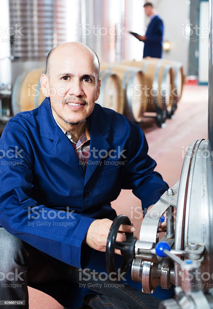 mature man working on winery stock photo