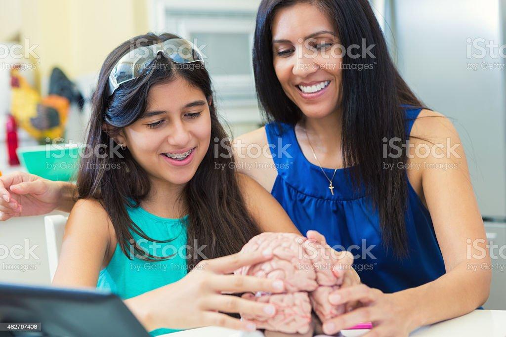 Mature mother teaching her preteen daughter during homeschool science class stock photo
