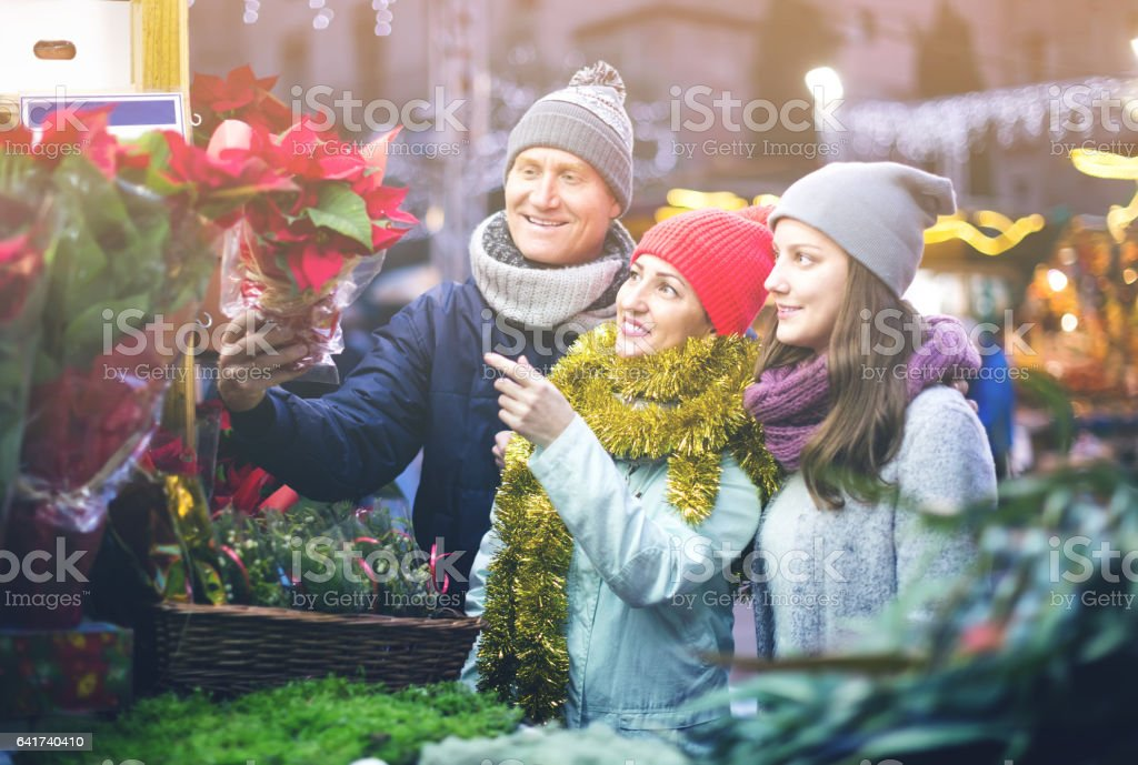 mature parents with teenage girl at counter with Poinsettia stock photo