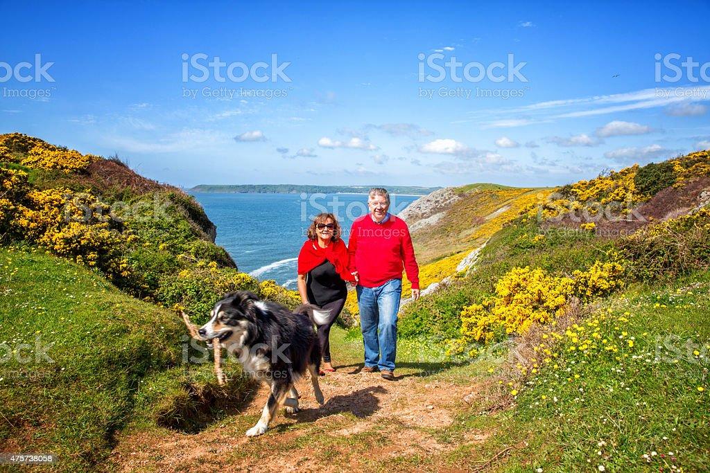 Mature senior couple walking on coastal headland with sheepdog stock photo