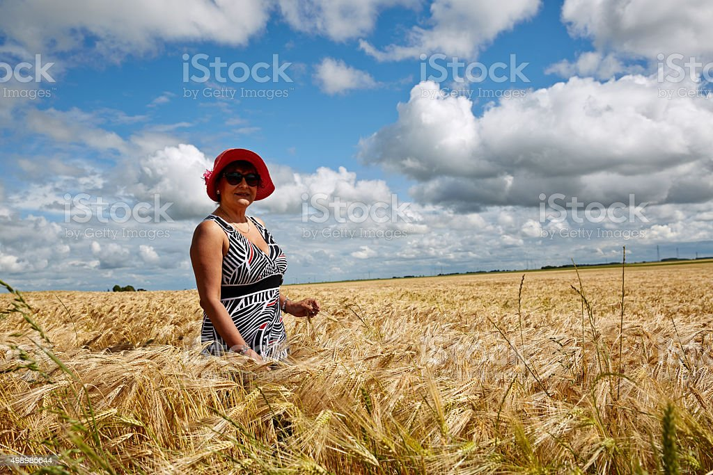 Mature smiling hispanic woman standing in golden wheatfield stock photo