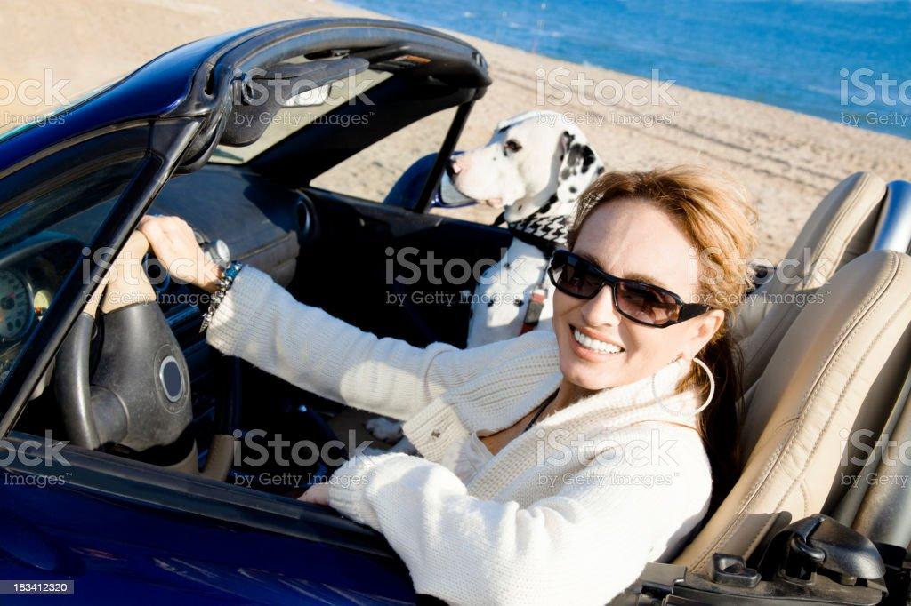 Mature woman and dalmatian dog in convertible stock photo