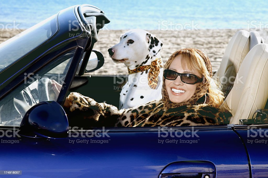 Mature woman and dog in convertible stock photo