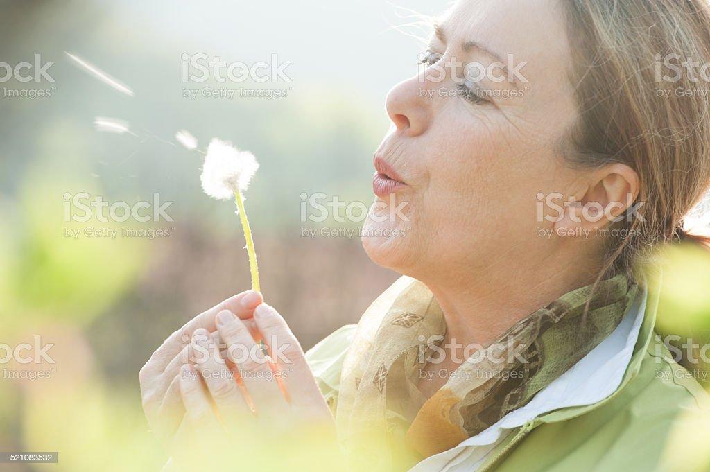 Mature woman blowing dandelion flower stock photo