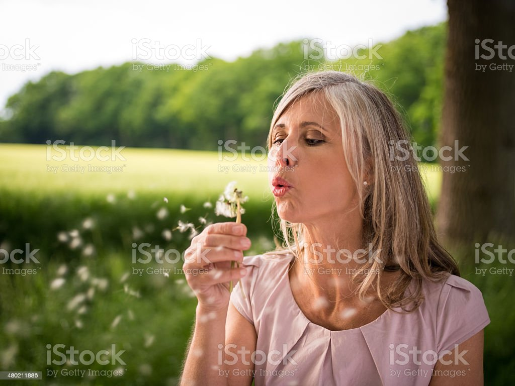 Mature woman blowing the seeds from dandelion in nature stock photo