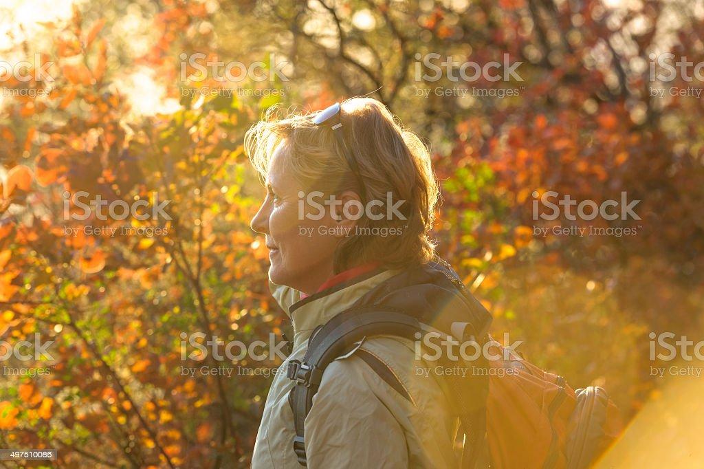 Mature  woman enjoys autumn colors Slovenia,Europe stock photo