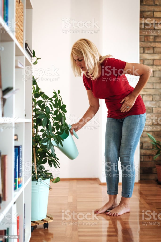 Mature woman facing pelvic pain at home while watering flowers stock photo