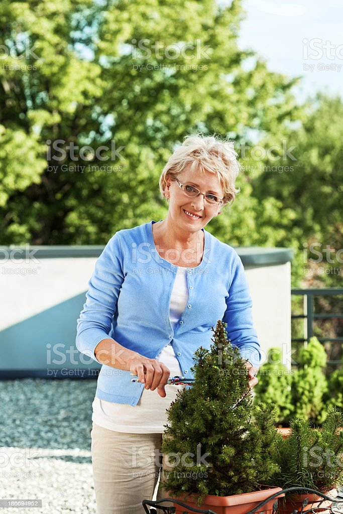 Mature woman gardening royalty-free stock photo