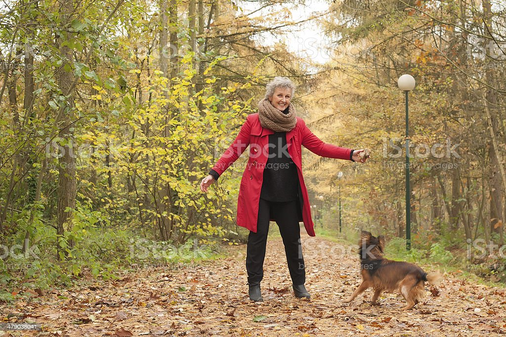 Mature woman playing with a dog in the woods royalty-free stock photo